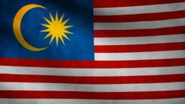 マレーシアの国旗. — ストックビデオ