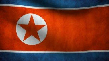 Nordkorea flagga. — Stockvideo