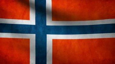 Norway flag. — Stock Video