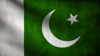 Pakistan flag. — Stock Video