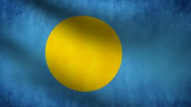 Palau flag. — Stock Video