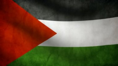 Palestine flag. — Stock Video