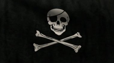 Pirate flag. — Stock Video