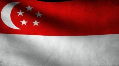 Bandera de Singapur. — Vídeo de Stock