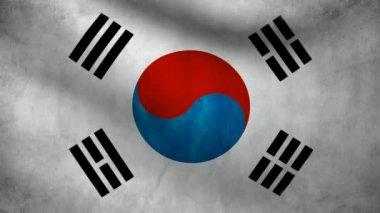 South Korea flag. — Stock Video #13692395