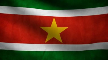 Surinam flag. — Stock video