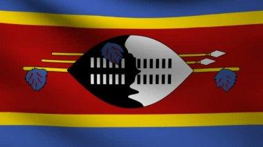 Swaziland flag. — Stock Video