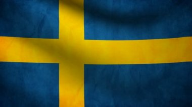 Sweden flag. — Stock Video #13696745