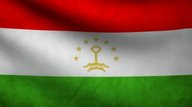 Tajikistan flag. — Stock Video