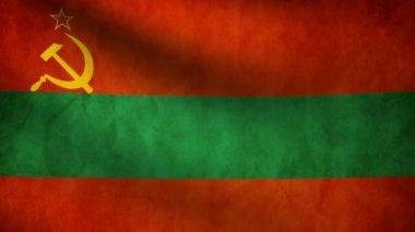 Transnistria flag. — Stock Video