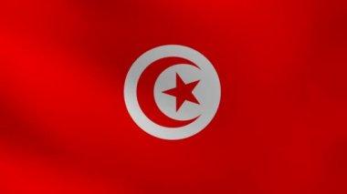 Tunisien flagga. — Stockvideo