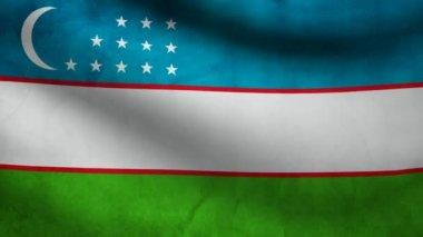 Uzbekistan flag. — Stock Video