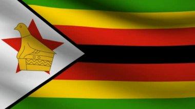 ジンバブエの国旗. — ストックビデオ