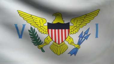 Virgin Islands flag. — Stock Video