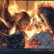 Stock Video: Fire in fireplace.