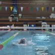 Стоковое видео: Swimmers swimming in indoor pool.