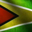 Guyana flag. - Stock Photo