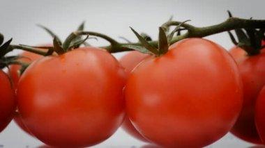 Döndürme, kiraz domates döngü. — Stok video