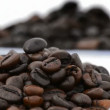 Natural coffee beans rotating loop. — Stock Video
