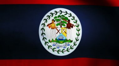 Belize flag. — Stock Video