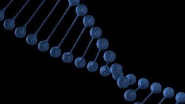 DNA chain loop — Stock Video