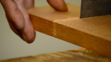 Luthier, carpenter, craftsman, cutting wood with hacksaw, close up — Video Stock