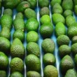 Avocados — Stock Video #40648645