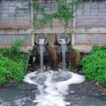 脏水 — 图库照片