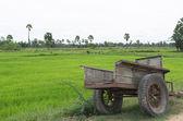 Truck farmers — Stock Photo