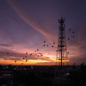 Silhouettes Telecommunication tower — Foto Stock