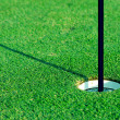 Golf hole — Stock Photo #31192055
