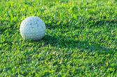 Balle de golf — Photo