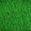 Stock Photo: Artificial grass.