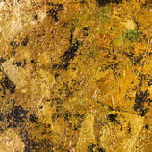 The gold leaf. — Stock Photo