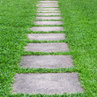 Pathway — Stock Photo #31752389