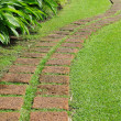 Pathway — Stock Photo #31754895