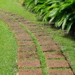 Pathway — Stock Photo #34514401