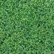 Green grass texture — Stock Photo #34529403