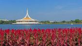 Royal garden Rama IX — Stock Photo