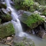 Waterfall — Stock Photo #39832083