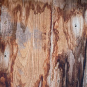 texture old wooden — Photo