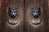 Lion head handles — Stock Photo