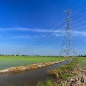 Poste eléctrico de alto voltaje — Foto de Stock