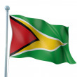 Stock Photo: GuyanFlag Detail Render