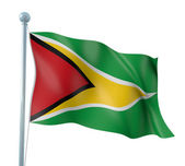Guyana Flag Detail Render — Stock Photo
