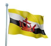 Brunei bayrağı ayrıntı render — Stok fotoğraf