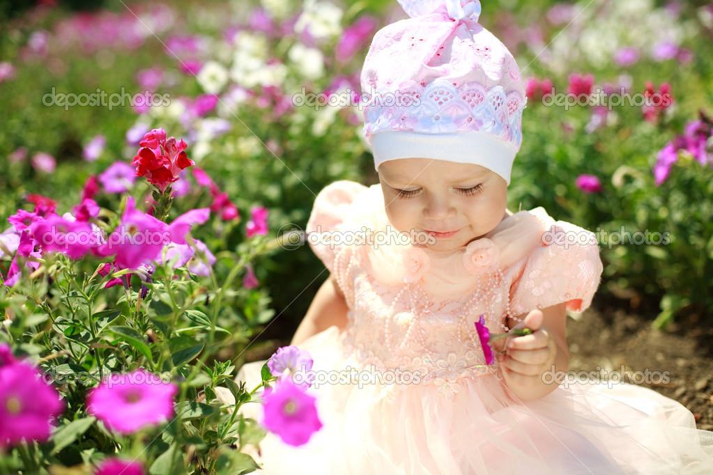 flores para jardim verao : flores para jardim verao: desfrutar de flor no jardim de verão — Imagem de Stock #12269432