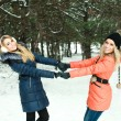 Portrait of two happy girls holding hands, posing in pinewood, on a winter day — Stock Photo