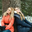 Two dreaming pretty girls in pinewood on a winter day — Stock Photo