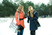 Two happy pretty girls walking in pinewood on a winter day — Stock Photo